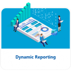 Dynamic Reporting Button